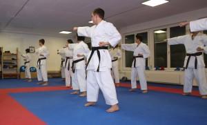 Training Erwachsene Nov 2016 (17)